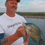 Clear water lakes require stealth presentations in the brush. Frank Zortman displays a nice Norfork Lake, AR, black crappie.