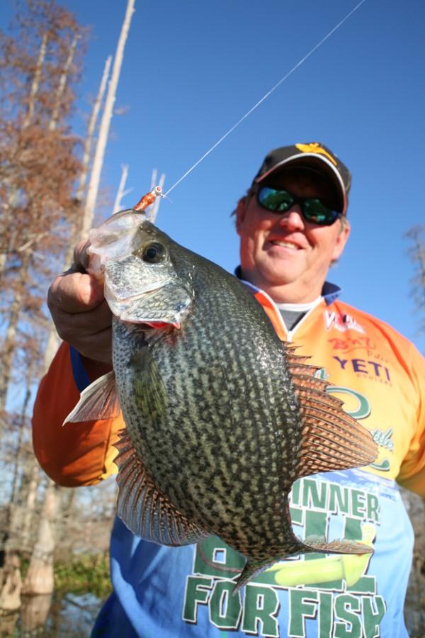 South Carolina's Whitey Outlaw likesorange body soft plastics for his muddy water swamp fishing.