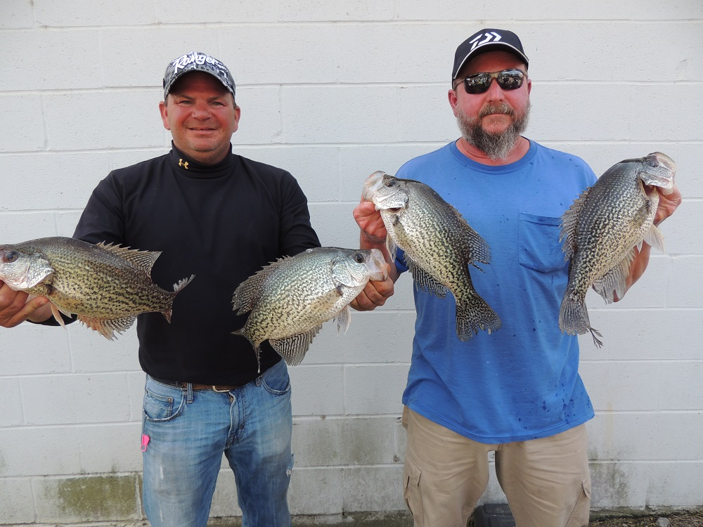 Crappie now free digital magazine rod wall and mike for Clarks hill lake fishing report