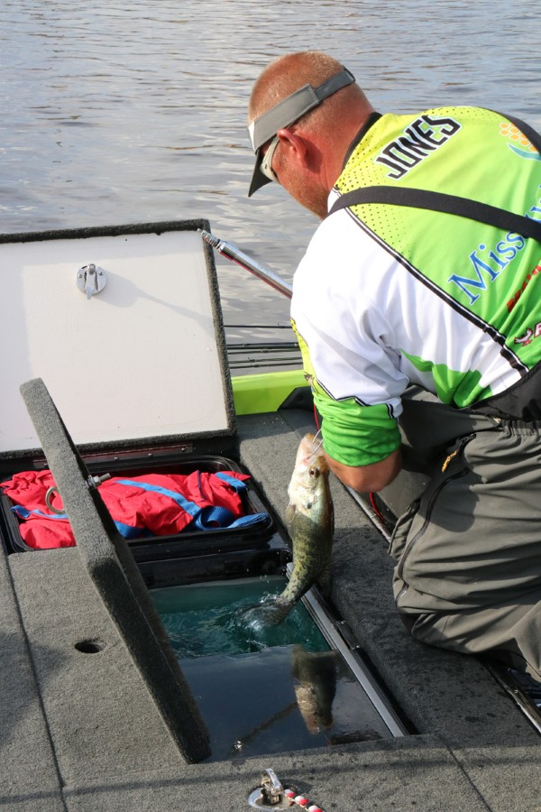 Kevin Jones pulls a good crappie from the livewell on day two of the Crappie Masters Lake D'Arbonne, Louisiana State Championship. Keeping fish alive is as important as catching them.