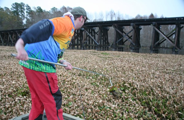 his rake/pole Matt Outlaw reaches across the water, placing the curved pointy part into a bed of thick weeds and then starts scraping, or scratching, the floating weeds apart.