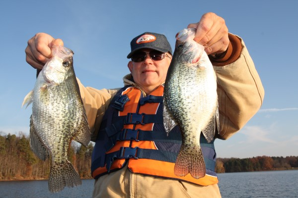 These fish were among 20-some nice-size crappies taken in late November from 28 feet of water near a river channel, laying smack on the bottom. They were caught by drop-shotting Baby Shads on a six inch leader above the weight.