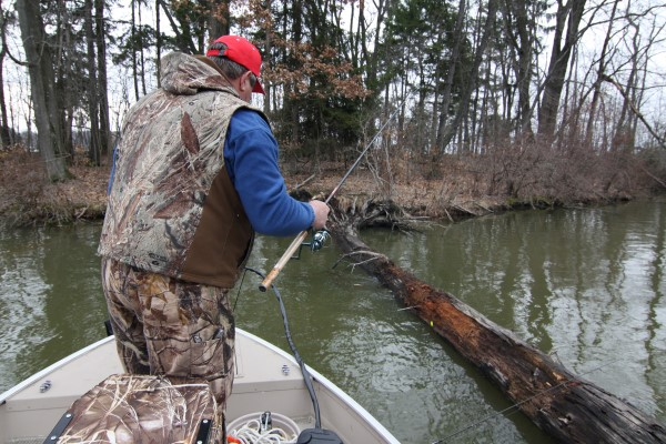 Angler dabbles small jig along blow down in a protected bay on Pymatuning Lake.
