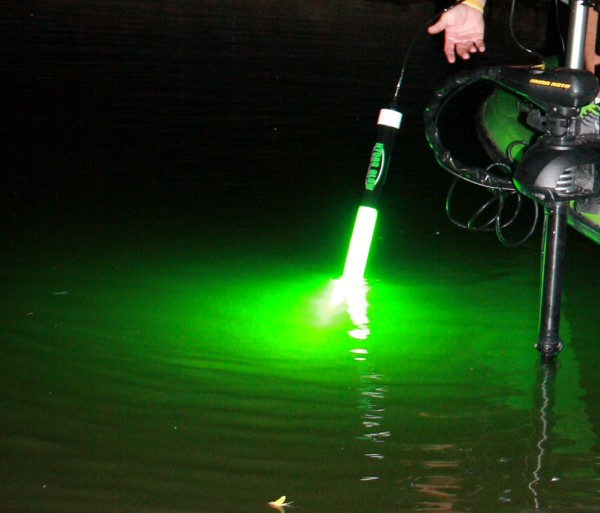 Deploying a long, green Hydro Glow light. The top is typically kept at the water surface with the bulb vertical down under the water.